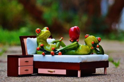 frog-1073356__340